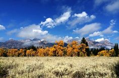 Grand Teton National Park, Wyoming is where I've wanted to go since I wad ten years old.