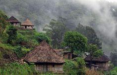 Timor Leste, Scene, House Styles, Travel, Beautiful, Instagram, Viajes, Destinations, Traveling