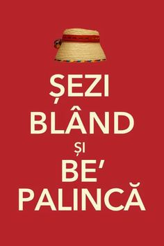 *Keep Calm and drink palinca*- de Maramures . Pune, Funny Walk, Opening A Restaurant, Romanian Food, Romanian Recipes, Romania Travel, Keep Calm And Drink, Funny Messages, Ioi