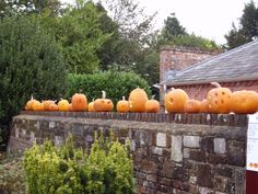 See 1 photo from 29 visitors to Lytchett Minster. Four Square, Trips, Arts And Crafts, Pumpkin, Seasons, Image, Traveling, Travel, Gourd