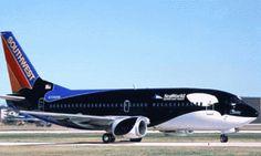 Southwest Airlines Shamu plane