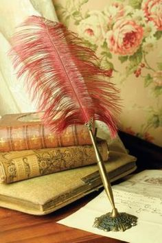 Ostrich Plume Pen & Holder    Scribe your words with finesse! What better accompaniment to guest books or desk registry? Or simply light a candle, add classical music and compose an inspired letter for a deserving loved one. Antique brass finish.