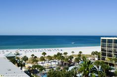 Beach Front Resort   #stpete #florida #beach #blue #family #fun #resort #vacation #clearwater #tampa #sirata