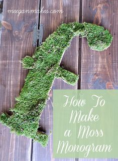 How To Make a Moss M