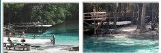 BLUE SPRINGS PARK - Swimming & Camping - High Springs, Florida https://www.facebook.com/pages/Blue-Springs-Park/193084620754545?sk=timeline