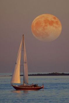 Sunset sailboat – Vehicles is art Shoot The Moon, Sail Away, Beautiful Moon, Jolie Photo, Beautiful Places In The World, Sailing Ships, Sunrise, Beautiful Pictures, Scenery