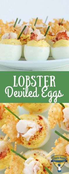 Step up the old deviled egg recipe with this fancy twist! Lobster tail is what your recipe has been missing all these years and is sure to impress your guests for Easter, Mother's Day, or any holiday party! Lobster Appetizers, Lobster Recipes, Yummy Appetizers, Appetizers For Party, Appetizer Recipes, Easy Brunch Recipes, Egg Recipes, Crab Deviled Eggs Recipe, Mothers Day Dinner