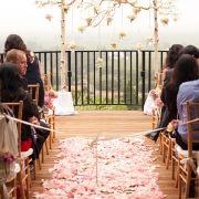 Wedding ceremony birch arch