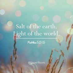 "Matthew 5:13-16 ""You are the salt of the earth; but if the salt has become tasteless, how can it be made salty again? It is no longer good for anything, except to be thrown out and trampled under foot by men.   ""You are the light of the world. A city set on a hill cannot be hidden;  nor does anyone light a lamp and put it under a basket, but on the lampstand, and it gives light to all who are in the house.  Let your light shine before men in such a way that they may see your good works, and…"
