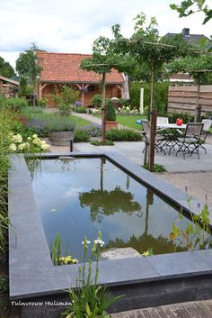 Zicht over langwerpige vijver - view over rectangular pond. Design: Tuinvrouw Huisman Netherlands