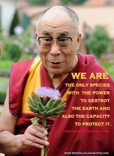 The Dalai Lama, words of wisdom, reminders of how vigilantly we must protect our Mother Earth Wisdom Quotes, Me Quotes, King Quotes, Great Quotes, Inspirational Quotes, 14th Dalai Lama, Earth Quotes, Buddhist Quotes, Osho