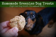 Homemade Greenies Dog Treats! Natural doggy-breath freshening treats made with parsley, mint, coconut oil and more (no mystery ingredients here). #homemade #diy #dogs
