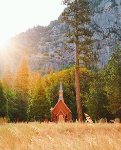 Yosemite National Park  #travelingram #travel #traveling #vacation #instatravel #iphone #holiday #travelling #animals #tourist #nature