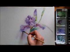 (7071) ❤ watercolor painting flower tutorial《Purple IRIS》水彩花卉教程《紫鸢》【画时光】 - YouTube
