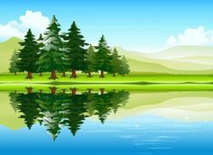 Forest landscapes vector illustrations