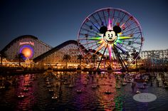 California Adventure - Disneyland - Anaheim, CA