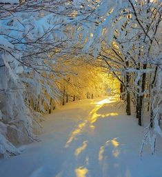 Winter wonder land breathtaking