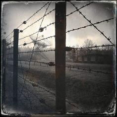 Westerbork Concentration Camp - 43