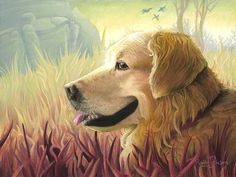 Amber Fields by Ruth Johnson - Golden retriever pastel painting print - dog art