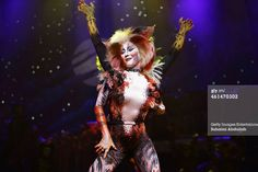 SINGAPORE - JANUARY 13: Cast members for the musical 'CATS' perform on stage during a media preview at the Marina Bay Sands Mastercard Theatre on January 13, 2015 in Singapore. The musical by Andrew Lloyd Webber, holds the record for one of the longest running musical in West End history playing for 21 years and will make a return to Singapore from January 9 to February 1, 2015.