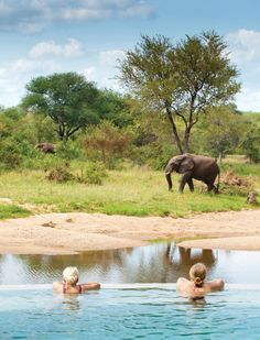 Open to the Kruger National Park and playing host to Africa's Big Five is Motswari Private Game Reserve. Mind Blowing Pictures, Private Games, Beyond The Sea, Vacation Trips, Beach Vacations, Victoria Falls, Out Of Africa, Game Reserve, African Safari