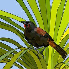 Tīeke (Saddleback) on Photo Block Photo Blocks, Photo Reference, Birds, Quilts, Painting, Animals, Image, Website, Digital