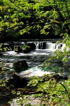 Aysgarth Falls in Yorkshire UK, taken in mid-morning light in late Spring 2015 www.girlbehindthelens.com