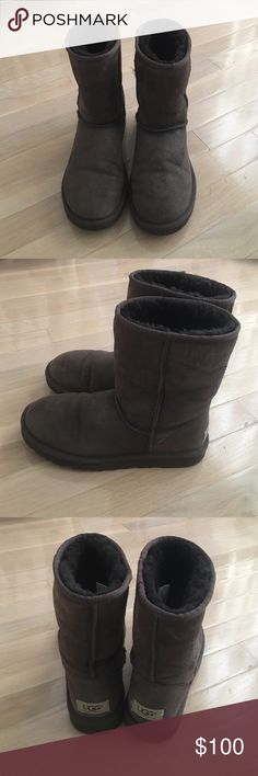 Chocolate short uggs Fantastic condition, maybe worn once or twice, size 7 UGG Shoes Winter & Rain Boots