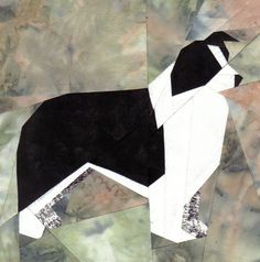 silver linings canine corner border collie