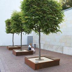 Boombak, misschien in CortenStaal uitvoering of anders beton in maat 1x1 m.. Wel prijzig. 2 dakbomen te plaatsen in boombak ipv planten in de grond.