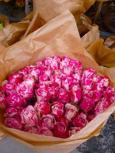 Speckled Roses