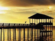 Mobile, Alabama - sweet tea & seafood , deep sea fishing, hiking, kayaking and southern living