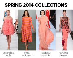 Coral SS14