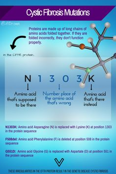 Ever wonder what your Cystic Fibrosis mutation means? This infographic explains the significance of your mutation.