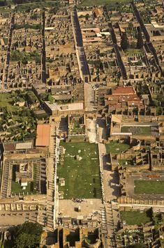 Pompeya, la ciudad desenterrada                                                                                                                                                                                 Más