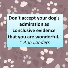 Dog Quotes to Love!