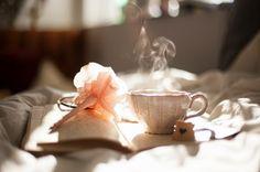 Infusiones para dormir - Hierbas, té y otros remedios naturales  #salud #spoots
