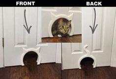 Interior Cat Door       >>>>> Buy it now    http://amzn.to/2bYYGJA
