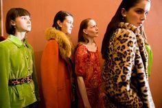 Blugirl at Milan Fashion Week Fall 2017 - Backstage Runway Photos
