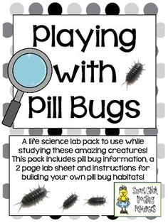 Playing with Pill Bugs ~ Lab Pack with Pill Bug Information and Lab Sheets ~ FREEBIE!