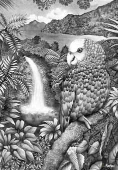 . Animal Coloring Pages, Colouring Pages, Adult Coloring Pages, Coloring Books, Black And White Prints, Black And White Drawing, Bird Drawings, Stencil Art, Heart For Kids