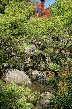 Photographed at the Portland Japanese Garden in Portland, Oregon. Portland Japanese Garden, Stepping Stones, Golf Courses, Water, Outdoor Decor, Gripe Water, Stair Risers