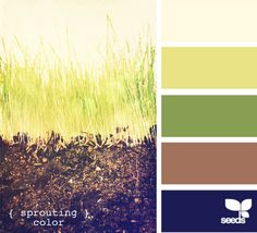 sprouting color