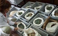 Leggi tutto su archeologia monete spagna
