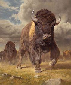 ●••°‿✿Bison aka Buffalo ⁀ ‿✿⁀°••●