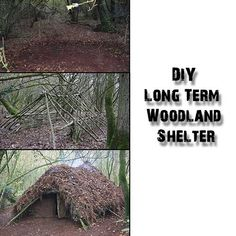 DIY Long Term Woodland Shelter - SHTF, Emergency Preparedness, Survival Prepping, Homesteading