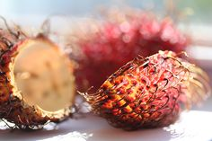Have you ever seen the skin of a lychee fruit backlit by the sun?  Well now you have!