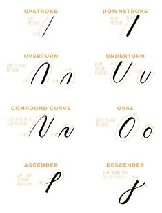 Create a strong foundation in your calligraphy practice by learning the basic calligraphy strokes in modern calligraphy with this free worksheet! Basic Calligraphy Strokes, Modern Calligraphy Tutorial, Modern Calligraphy Alphabet, Calligraphy Drawing, Hand Lettering Tutorial, Modern Caligraphy, Calligraphy Worksheets Free, Calligraphy Lessons, Calligraphy Words