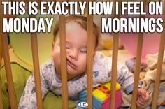 We're pretty sure this is how EVERYONE feels on #Monday mornings. #Joke #Meme