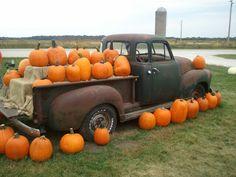 Harvestville Farm !! Pumkins galore !!!